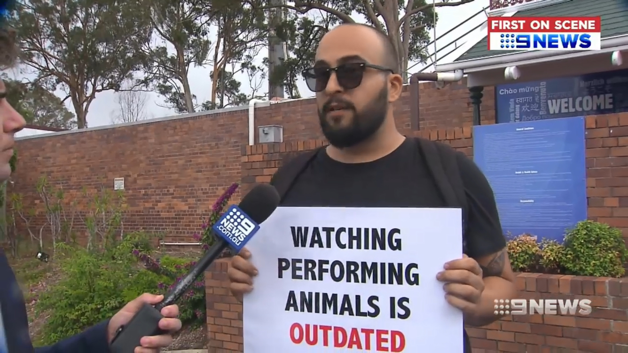 Animal rights activists climb roof of Dreamworld