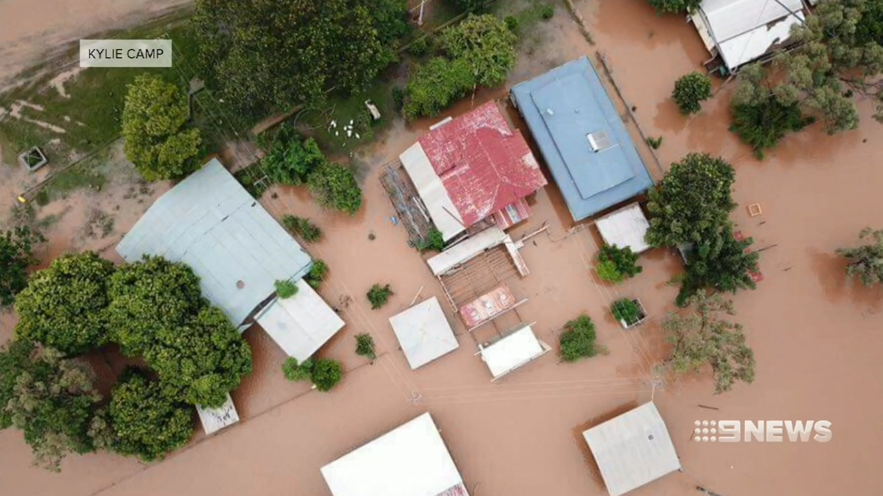 Queensland Floods: 300,000 head of cattle killed by rising