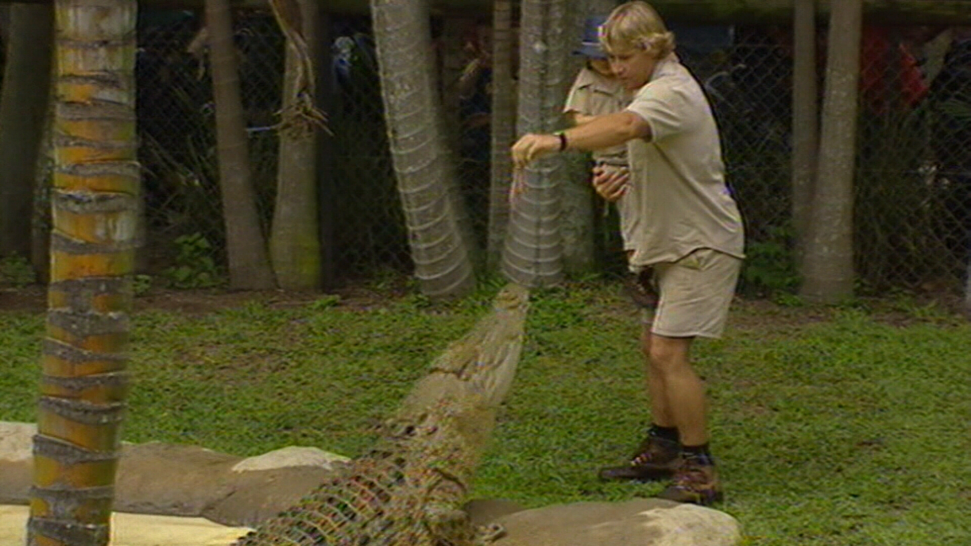 Google Doodle celebrates Steve Irwin, the original Crocodile Hunter