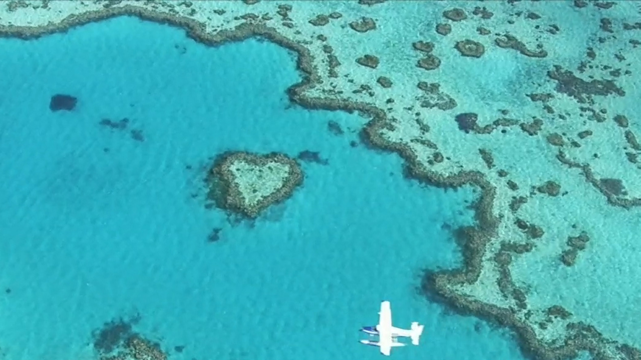 Man bitten by shark near famous Heart Reef
