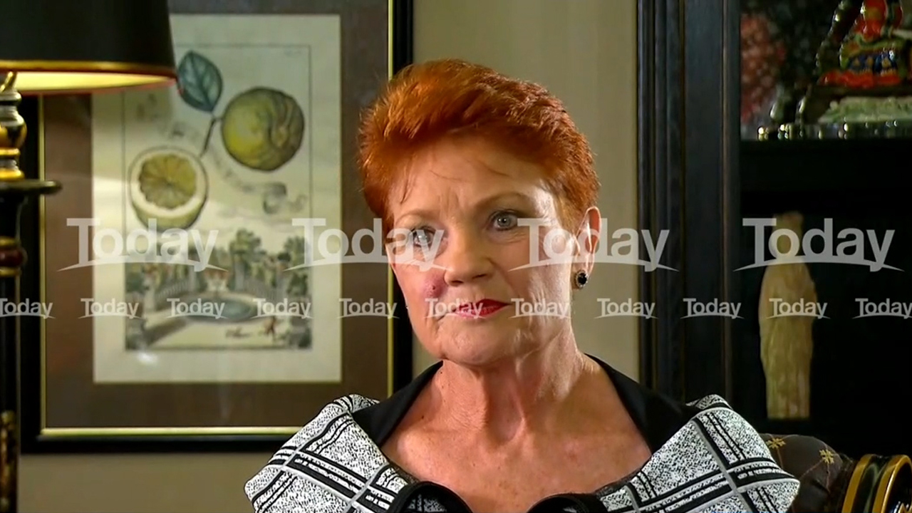 Newsroom Pauline Hanson Defiant Over Guns Scandal a day ago