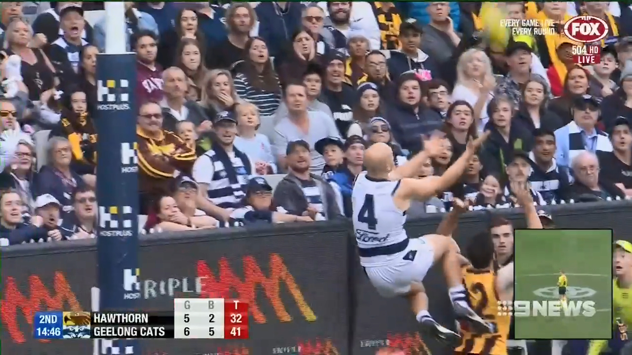 Cats prevail over Hawks
