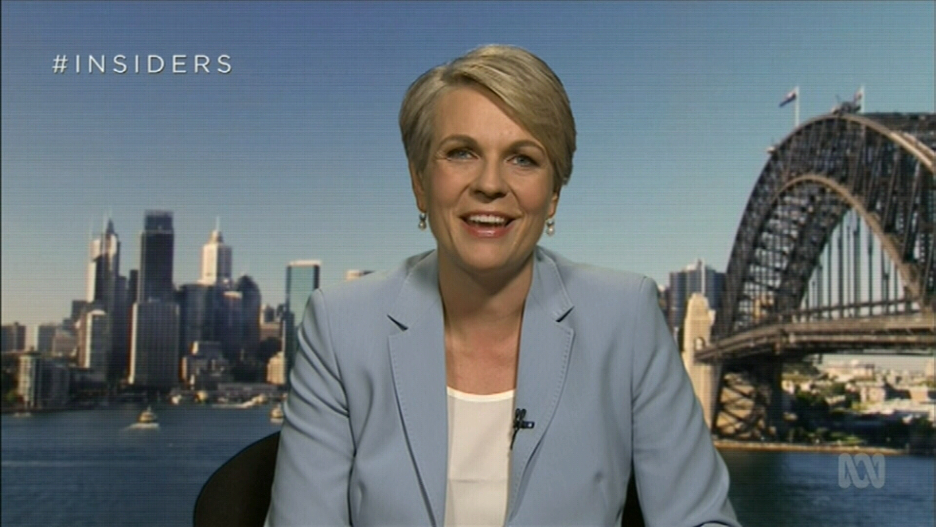 Tanya Plibersek considers running for Labor leadership
