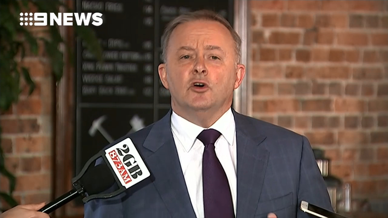 Anthony Albanese announce tilt at leadership