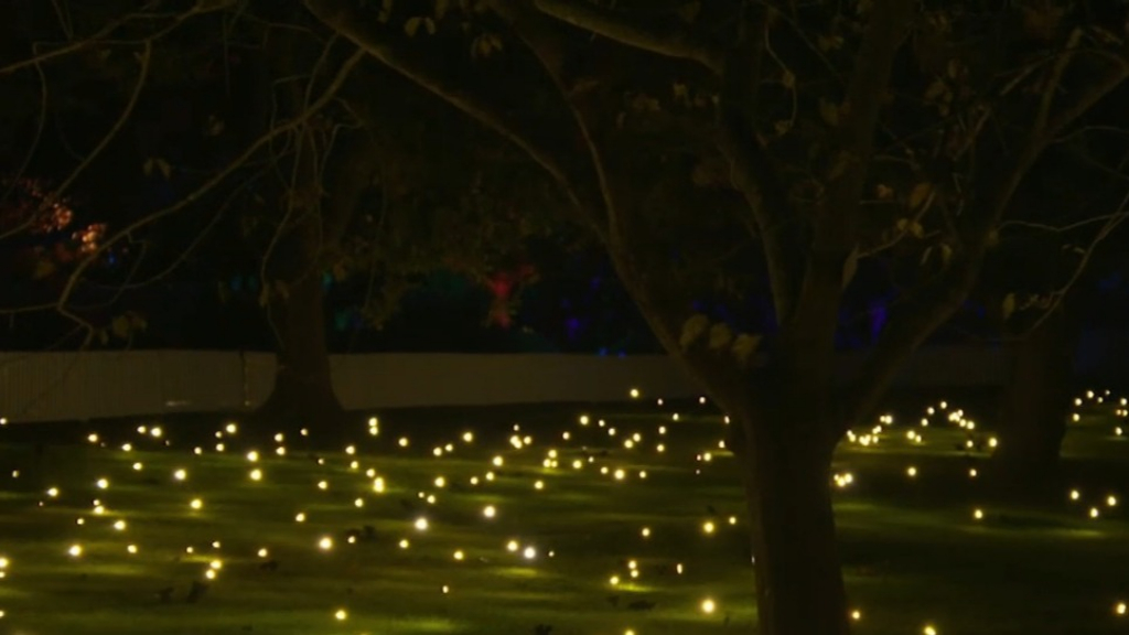 Sydney prepares for 11th Vivid festival