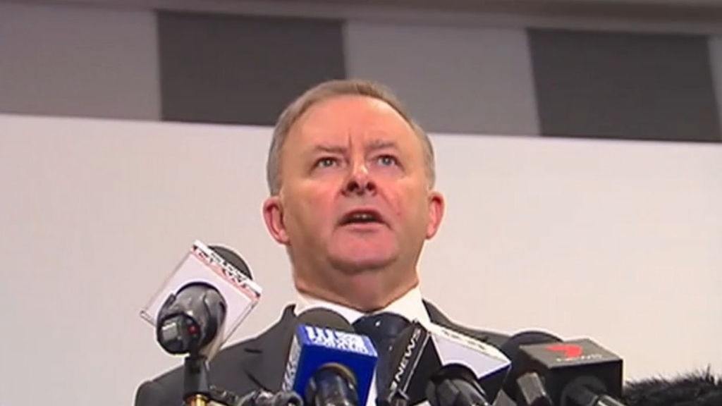Anthony Albanese elected unopposed as Labor leader