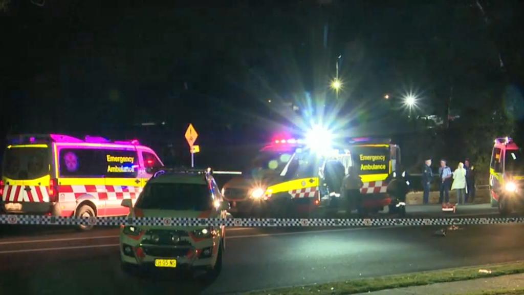 Man killed in Sydney brawl