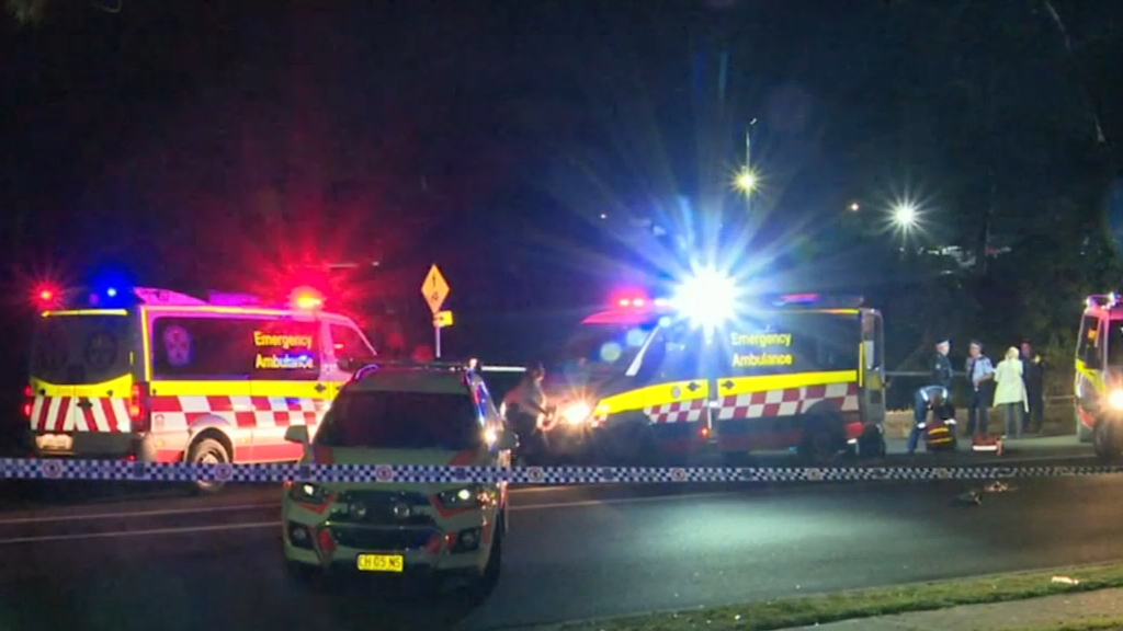 Teenager killed in brawl at Sydney party