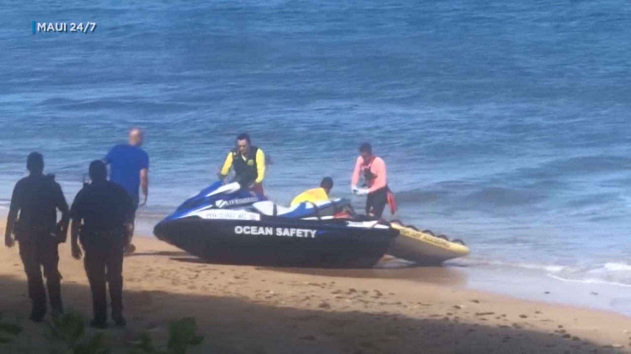 Man killed in Hawaii shark attack pulled ashore missing leg