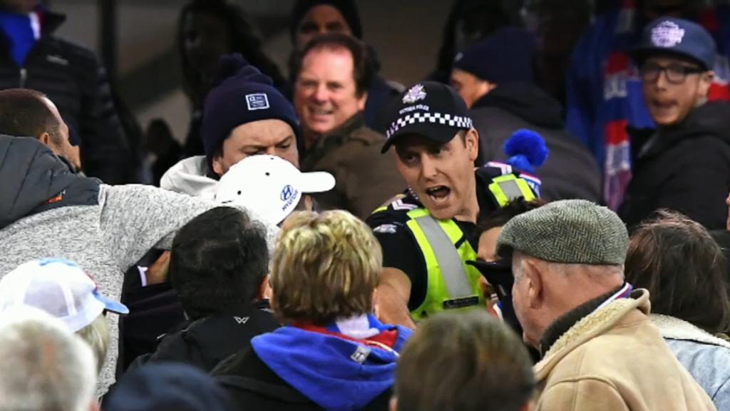 Brawl mars Bulldogs-Carlton AFL clash