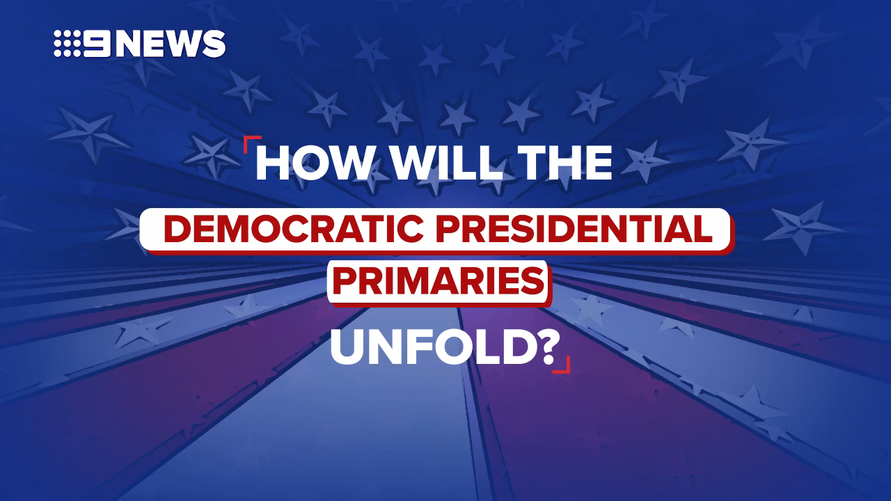 The Democratic race for president, explained