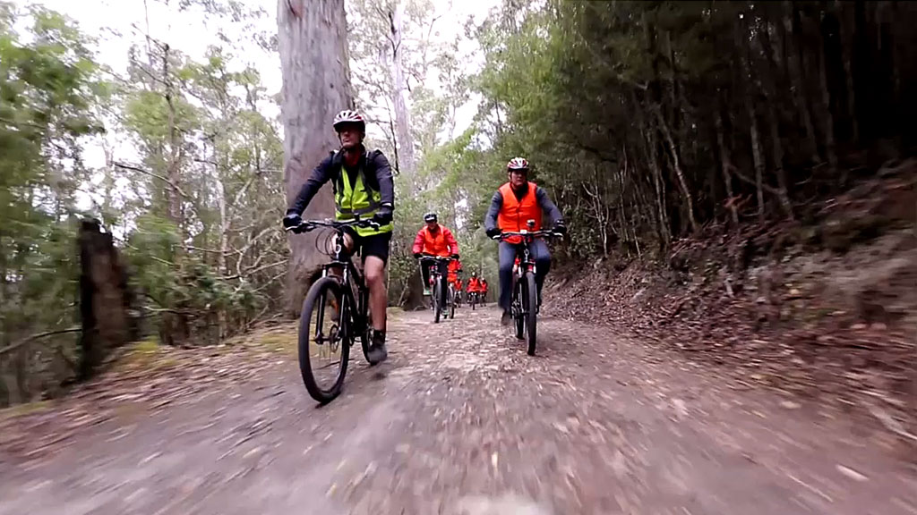 Mt Wellington cycle