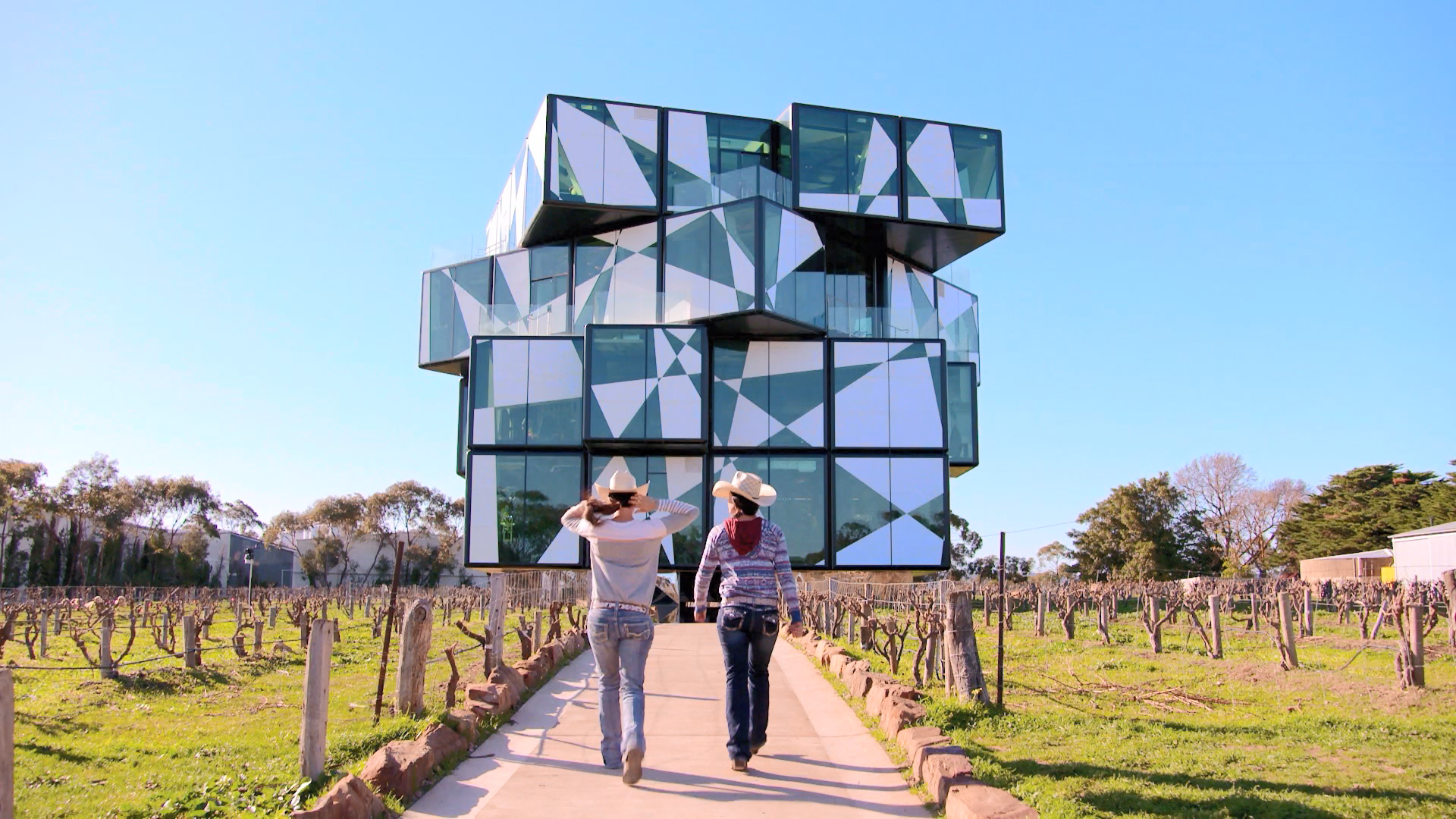 Cube cellar door confuses the Guides