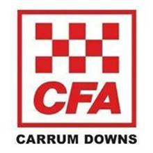 Carrum Downs Fire Brigade logo