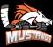 Melbourne Mustangs Ice Hockey Club Inc.