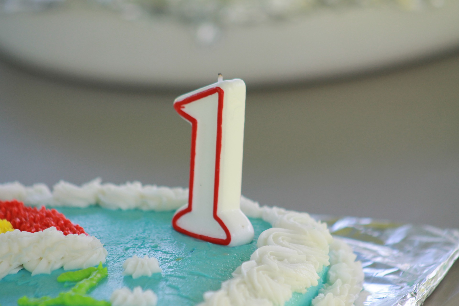 TSS Visa now One Year Old