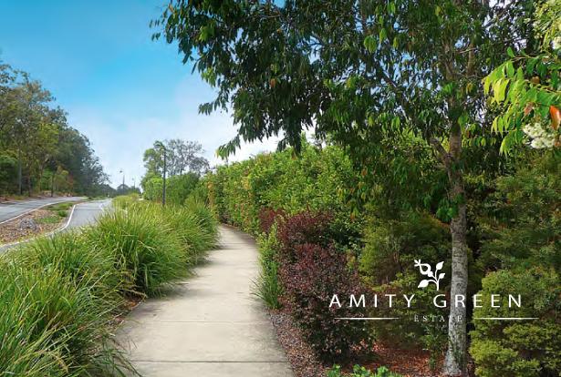 Amity Green Promo Image