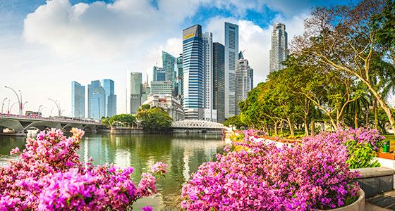 singapore 2016 city