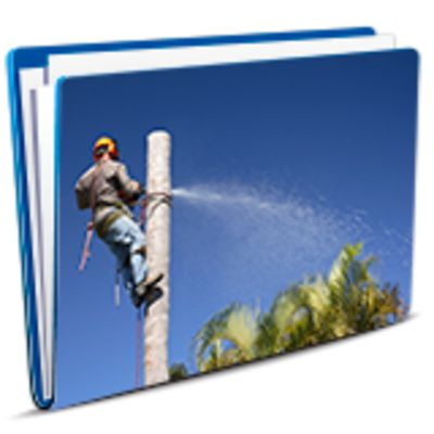Tree Lopping SWMS category image