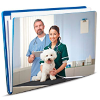 Veterinary Clinic SWMS category image