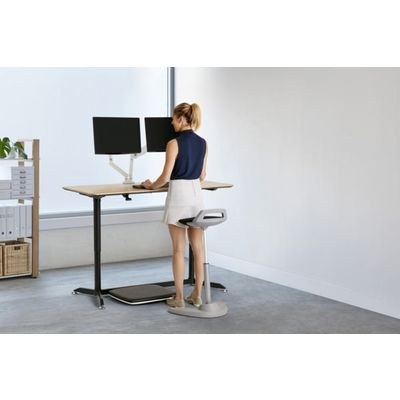 Sit Stand Furniture category image