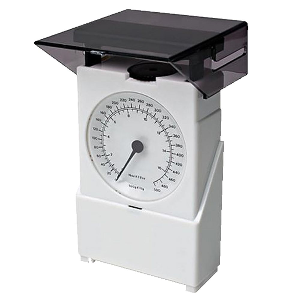 Spring Scale Picture