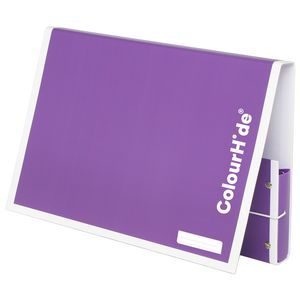 ColourHide My Handy Document Box A4 Purple