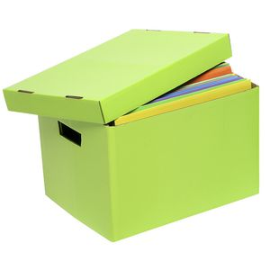 Marbig Coloured Archive Box Lime