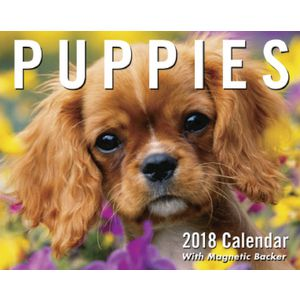Puppies 2018 Mini Day to Day Calendar