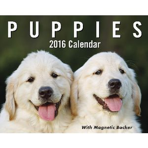 2016 Mini Day to Day Calendar Puppies