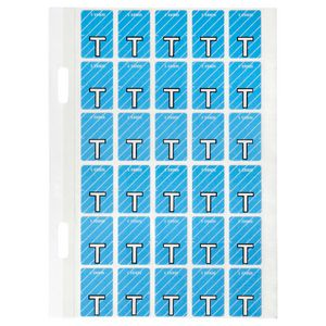 Avery Lateral File Top Tab Label 'T' 150 Pack