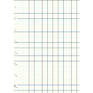 Filofax A5 Squared Notes White