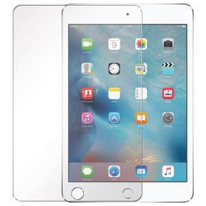 Cleanskin Glass Screen Protector iPad 9.7""