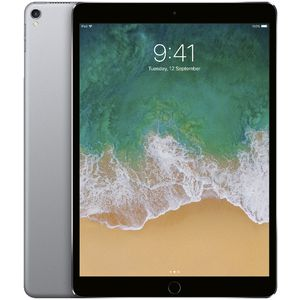 "iPad Pro 10.5"" 256GB WiFi Space Grey"