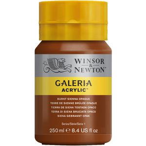 Winsor & Newton Acrylic Paint 250mL Burnt Sienna Opaque