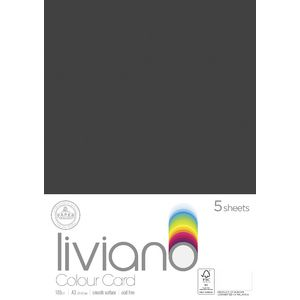 Liviano A3 Colour Card 180gsm Black 5 Pack