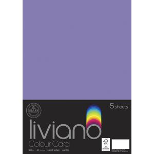Liviano A3 Colour Card 300gsm Purple 5 Pack