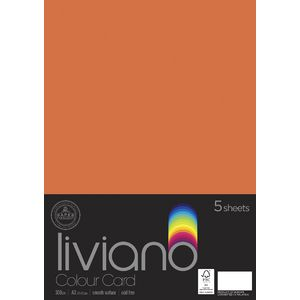 Liviano A3 Colour Card 300gsm Orange 5 Pack
