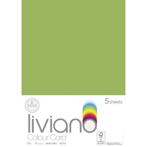Liviano A3 Colour Card 180gsm Grass 5 Pack