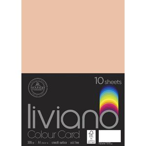 Liviano A4 Colour Card 300gsm Salmon 10 Pack