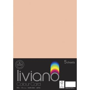 Liviano A3 Card 300gsm Salmon 5 Pack