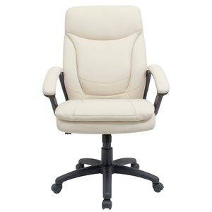 Hilton Chair BuffLeather Chairs   Plush Chairs online   Officeworks. Officeworks Chair. Home Design Ideas
