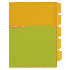 Kokuyo Color Tag A5 Bi-Color Letter File 5 Tab Yellow/Green