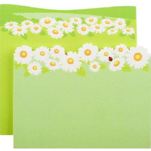 Little B Decorative Note Pad Daisies 2 Pack