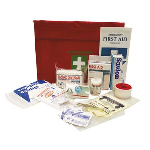 Livingstone Auto First Aid Kit in Nylon Bag
