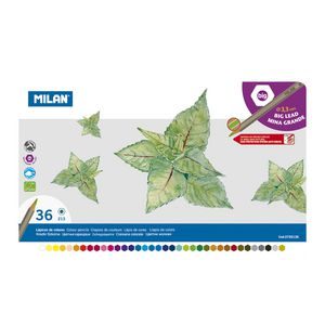 Milan Coloured Pencils in Tin 36 Pack