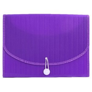 Expanding File A4 13 Pocket Violet