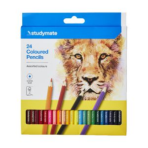 Studymate Coloured Pencils 24 Pack