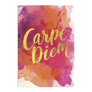 Studio Oh! So On Time Weekly Planner Carpe Diem