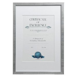 Lifestyle Brands A3 Certificate Frame Brushed Silver 100 Pack
